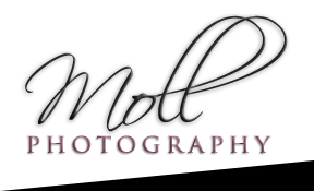 Moll Photography [logo]